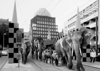 FIGURA-3_fotoinserimento-di-un-branco-di-elefanti-nelle-vie-di-Hannover-scaled